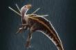 Loài khủng long có gai mọc tua tủa trên vai, thích nhảy múa tán tỉnh bạn tình