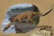 Hóa thạch 110 triệu năm tiết lộ loài khủng long cổ dài kỳ quái