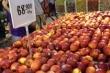 Hoa quả nhập khẩu: Siêu thị bán rẻ giật mình