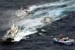 Nhật Bản bắt giữ tàu cá Đài Loan