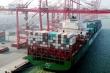 Trung Quốc cài phần mềm gián điệp trong vận tải biển