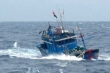 Truy tìm tàu hàng đâm chìm tàu cá rồi bỏ chạy