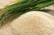 Giá gạo Thái Lan tăng mạnh, gạo Việt Nam giảm