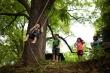 Trường học tại Mỹ được hoạt động trong rừng mùa COVID-19