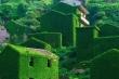 Kiến trúc lạ trong ngôi làng 'rừng xanh' đẹp như cổ tích