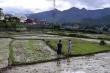 Khẩn trương điều tra thảm án 3 người chết ở Điện Biên