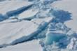 Chấn động: Bắc Cực có thể sẽ không còn băng trước năm 2050