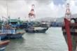 Bão số 9 sắp đổ bộ đất liền, Bình Định cấm tàu thuyền xuất bến