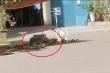 Người đàn ông rơi từ tầng cao chung cư ở Hà Nội xuống đất thiệt mạng