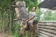 Video: Người dân bắt được nhiều cá sấu ở vùng ven TP.HCM