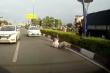 Tài xế cầm cờ lê, gậy sắt hỗn chiến sau va chạm giao thông