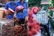Công an Bắc Giang căng mình điều tiết giao thông trong mùa thu hoạch vải thiều