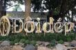 Lâm Đồng: Vi phạm về môi trường, Công ty Sandals bị 'sờ gáy'