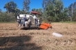 Cà Mau chung sức xây dựng nông thôn mới giữa đại dịch COVID-19