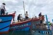 Đang neo đậu, tàu cá của ngư dân Quảng Nam bị sóng đánh chìm