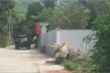 Nữ bí thư huyện nghèo ở Huế đi xe công tiền tỷ vượt khung quy định của Chính phủ