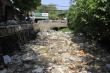 Ảnh: Rác thải phủ kín mặt nước, kênh Hy Vọng khiến người Sài Gòn khiếp sợ