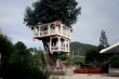 Căn nhà hai tầng đẹp như mơ trên cây thị gần 100 tuổi ở Nha Trang