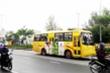 Đà Nẵng cho phép xe buýt liên tỉnh liền kề hoạt động trở lại