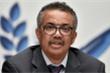 Tổng giám đốc WHO: Vaccine COVID-19 có thể sẵn sàng vào cuối năm