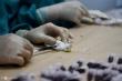 Việt Nam đặt mua vaccine COVID-19 của ba nước nào?