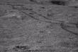 Tàu thăm dò Trung Quốc phát hiện 'chất keo' bí ẩn trên vùng tối Mặt Trăng