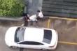Clip: Người đàn ông bế trẻ nhỏ đánh đập dã man một phụ nữ