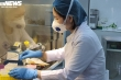 TP.HCM mở rộng đối tượng khai báo y tế bắt buộc