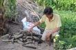 Xả thải gây ô nhiễm sông Cái Lớn: Dân nuôi thủy sản mỏi mắt chờ bồi thường