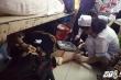 Bệnh viện Ung bướu TP.HCM: Bệnh nhân chen nhau dưới gầm giường, bác sĩ phải ngồi xuống tiêm