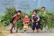 Đài Truyền hình Kỹ thuật số VTC ra mắt chương trình 'Trao cơ hội - nối ước mơ'