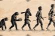 Loài người ngày nay có đang tiếp tục tiến hóa?