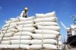 Thanh tra Chính phủ quyết định thanh tra hoạt động xuất khẩu gạo