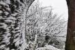 Rét đậm bao trùm miền Bắc, những nơi nào sắp xuất hiện mưa tuyết?