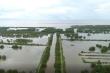 Gần 400ha đất bỏ quên ở Hải Phòng: Cơ quan chức năng loay hoay 10 năm chưa xong
