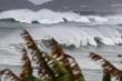 Siêu bão Haishen đổ bộ Nhật: Hàng triệu người sơ tán, Thủ tướng Abe chỉ đạo khẩn