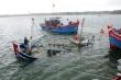 Khánh Hoà: Tàu cá chìm trên biển, 12 ngư dân mất tích