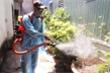 Bệnh nhân nhiễm virus Zika ở Đà Nẵng được điều trị khỏi