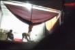 Video: Thâm nhập lò mổ không phép đưa lợn chết, lợn bệnh đi khắp Hà Nội