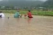 Bão số 6 làm toàn huyện đảo Lý Sơn mất điện, 4 người bị thương