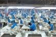 CPTPP có hiệu lực, doanh nghiệp Việt Nam được hưởng lợi gì?