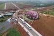 Ai là chủ nhân thật sự của quả đồi 36ha bị xẻ thành 1.000 nền đất ở Lâm Đồng?