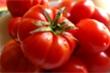 Những công dụng tuyệt vời của cà chua