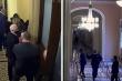 Vali hạt nhân của Tổng thống Mỹ suýt bị cướp trong cuộc bạo loạn đồi Capitol
