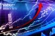 Chứng khoán 25/3: VN-Index bật tăng 16 điểm