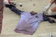 Truy tìm tung tích nạn nhân từ bộ xương không còn nguyên vẹn dạt vào bãi biển