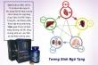 Gen X – Giải pháp hỗ trợ tăng cường sinh lý cho nam giới