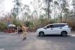 Bị yêu cầu cách ly phòng Covid-19, cướp ô tô bỏ trốn, đâm thẳng xe cảnh sát