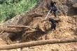 Bão số 10 gây mưa lớn, Quảng Nam cảnh báo lũ quét trên sông, suối vùng núi