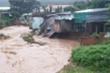 Bão số 9 gây tổn thất ở Kon Tum gần 370 tỷ đồng